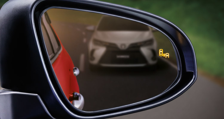 Blind Spot Monitor (BSM) with RCTA
